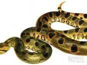 Китайский гороскоп год змеи