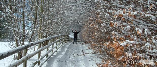 приметы зима