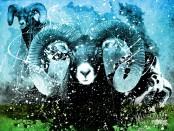 Китайский гороскоп год козы
