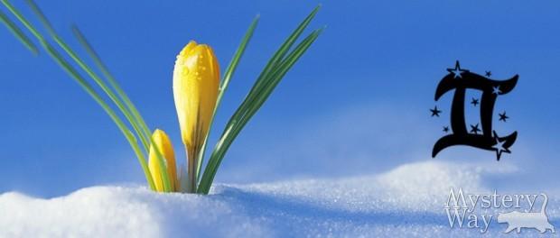 Близнецы апрель